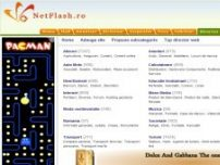 Netflash, Director web gratuit - director.netflash.ro