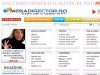 Director Web - www.megadirector.ro