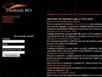Adauga un site in directorul web pentru o buna pozitionare in motoarele de cautare - www.teohost.ro